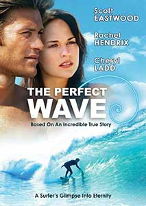 The Perfect Wave (2014) Online Subtitrat in Romana