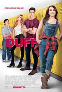 The DUFF (2015) Film Online Subtitrat