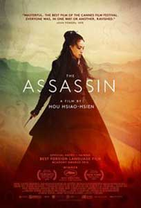 Asasinul - The Assassin (2015) Online Subtitrat in HD 1080p