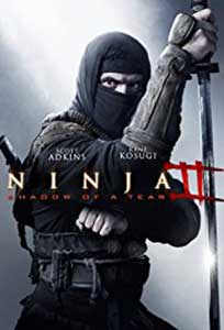 Ninja Shadow of a Tear (2013) Film Online Subtitrat