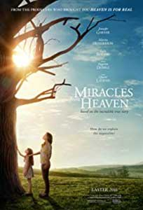 Miracles from Heaven (2016) Film Online Subtitrat