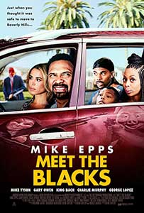 Meet the Blacks (2016) Online Subtitrat in Romana