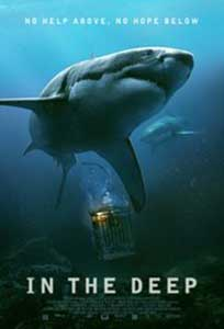 In the Deep (2016) Film Online Subtitrat