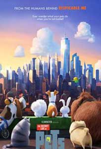 Singuri acasă - The Secret Life of Pets (2016) Online Subtitrat
