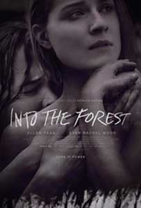 Into the Forest (2015) Film Online Subtitrat