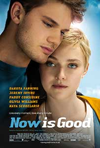 Acum e momentul - Now Is Good (2012) Film Online Subtitrat