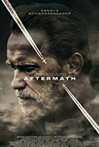 Aftermath (2017) Film Online Subtitrat