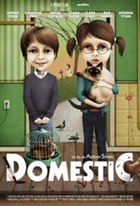 Domestic (2012) Film Romanesc Online in HD 1080p