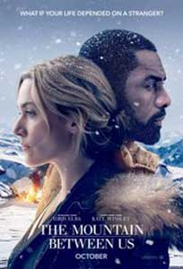 Muntele dintre noi - The Mountain Between Us (2017) Film Online Subtitrat