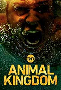 Împaratia fiarelor - Animal Kingdom (2016) Online Subtitrat in Romana