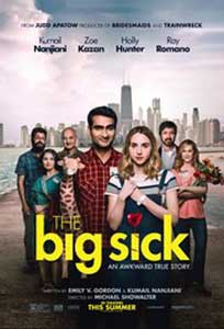 The Big Sick (2017) Film Online Subtitrat in Romana