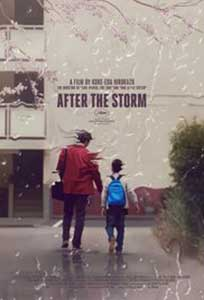 After the Storm (2016) Film Online Subtitrat