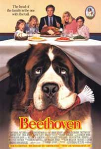 Beethoven (1992) Online Subtitrat in HD 1080p