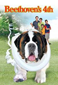 Beethoven's 4th (2001) Online Subtitrat in HD 1080p