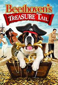 Beethoven's Treasure (2014) Online Subtitrat in HD 1080p