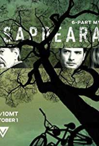 The Disappearance (2017) Serial Online Subtitrat in Romana