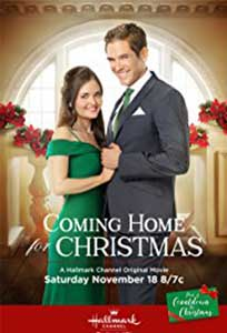 Coming Home for Christmas (2017) Film Online Subtitrat