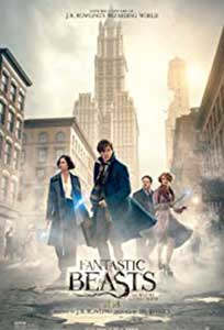 Fantastic Beasts and Where to Find Them (2016) Film Online Subtitrat