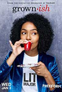 Grown-ish (2018) Serial Online Subtitrat