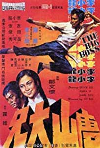 The Big Boss - Tang shan da xiong (1971) Online Subtitrat