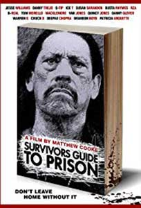 Survivors Guide to Prison (2018) Online Subtitrat