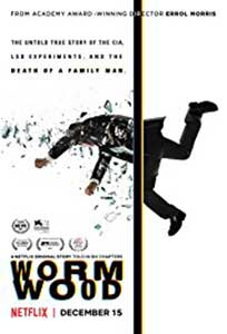 Pelin - Wormwood (2017) Serial Online Subtitrat in Romana