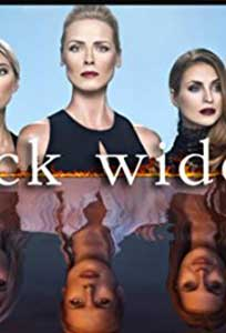 Black Widows (2016) Serial Online Subtitrat in Romana