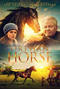 Orphan Horse (2018) Online Subtitrat in Romana in HD 1080p