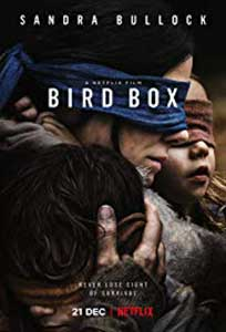 Bird Box (2018) Online Subtitrat in HD 1080p