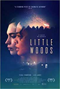 Little Woods (2018) Online Subtitrat in Romana in HD 720p