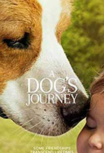 A Dog's Journey (2019) Online Subtitrat in Romana in HD 1080p