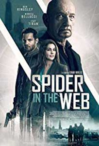 Spider in the Web (2019) Online Subtitrat in Romana in HD 1080p
