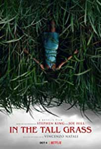 In the Tall Grass (2019) Online Subtitrat in Romana