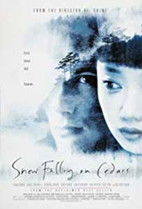 Snow Falling on Cedars (1999) Online Subtitrat in Romana