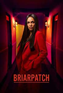Briarpatch (2019) Serial Online Subtitrat in Romana