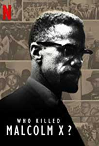 Who Killed Malcolm X? (2020) Serial Online Subtitrat