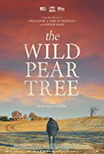 The Wild Pear Tree (2018) Online Subtitrat in Romana