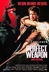 The Perfect Weapon (1991) Online Subtitrat in Romana