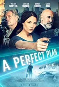 A Perfect Plan (2020) Online Subtitrat in Romana in HD 1080p