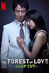 The Forest of Love: Deep Cut (2020) Serial Online Subtitrat