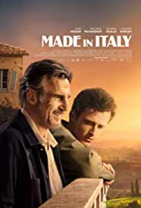 Made in Italy (2020) Online Subtitrat in Romana in HD 1080p