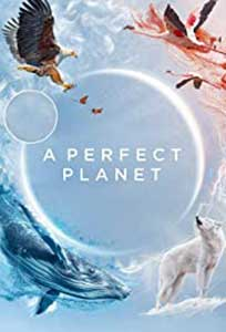 A Perfect Planet (2021) Serial Documentar Online Subtitrat