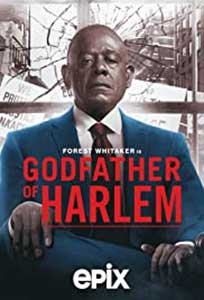 Godfather of Harlem (2019) Serial Online Subtitrat in Romana