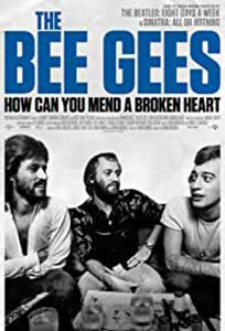 The Bee Gees: How Can You Mend a Broken Heart (2020) Documentar Online