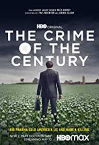 The Crime of the Century (2021) Serial Online Subtitrat
