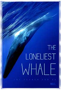 The Loneliest Whale: The Search for 52 (2021) Documentar Online